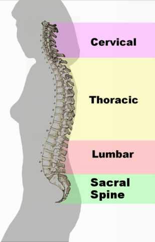 Bones out of Place and Structural Health
