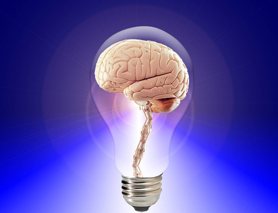 Find Out How Your Brain and Nervous System Work – Part 1